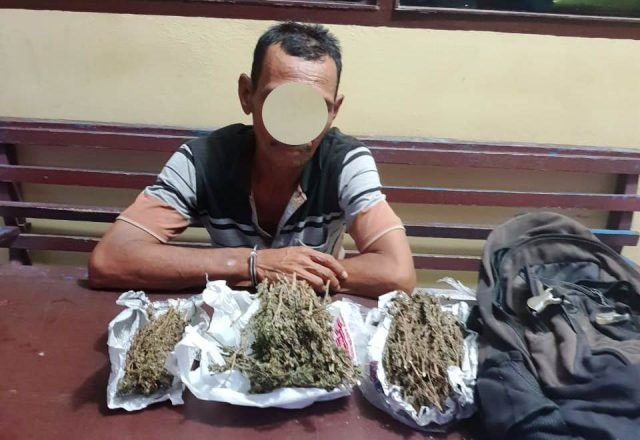 Polisi memperlihatkan tersangka pengedar ganja yang juga kuli bangunan bernama Salman, warga Kompleks Perumahan CRS, Desa Blang Beurandang, Kecamatan Johan Pahlawan, Aceh Barat, sesaat setelah ditangkap polisi di kompleks pendopo bupati di Meulaboh karena diduga kuat mengedarkan narkotika jenis ganja kepada masyarakat, Rabu (12/9) malam. Waspada/Dedi Iskandar