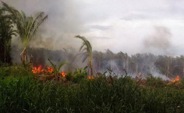 Lahan di Aceh Besar yang terbakar. (Foto/Ist)