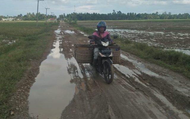 Ruas jalan Kecamatan Meurah Mulia, Aceh Utara, yang merupakan jalur akses kawasan pertanian Meunje Puet, mengalami rusak berat. (Foto/zainal abidin)